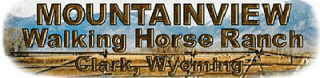Mountainview Walking Horse Ranch
